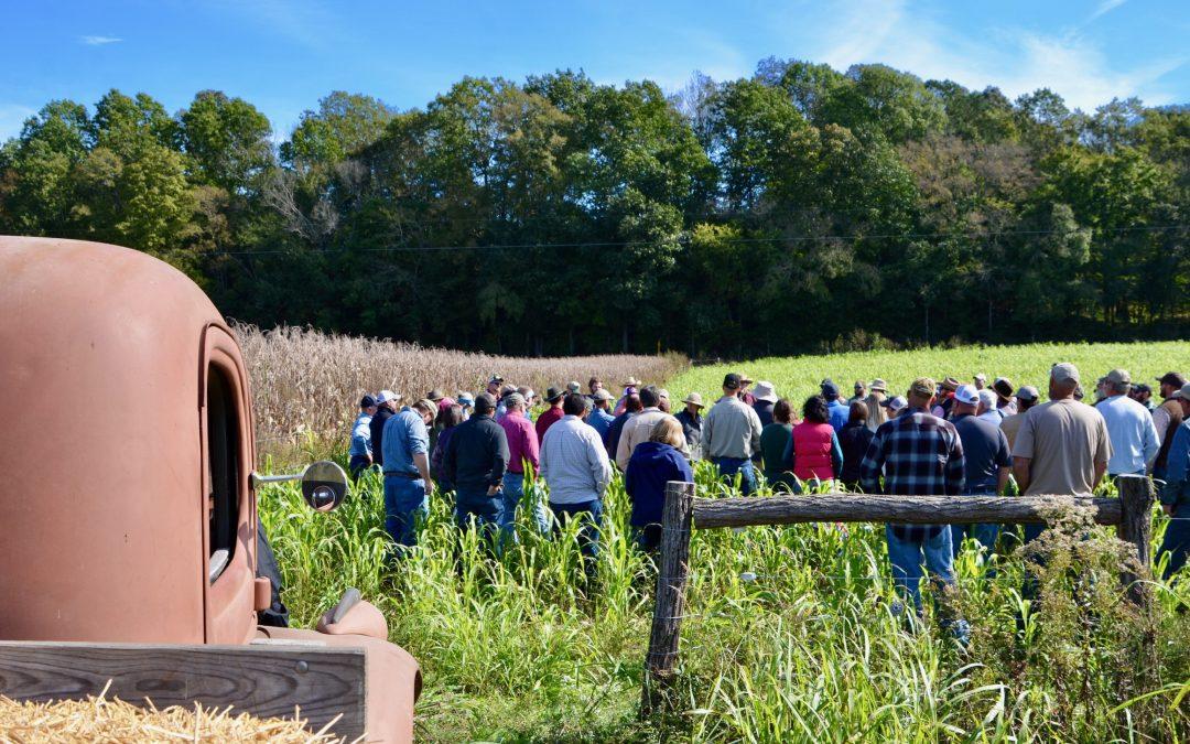 2020 Pasture Walk at Big Springs Farm